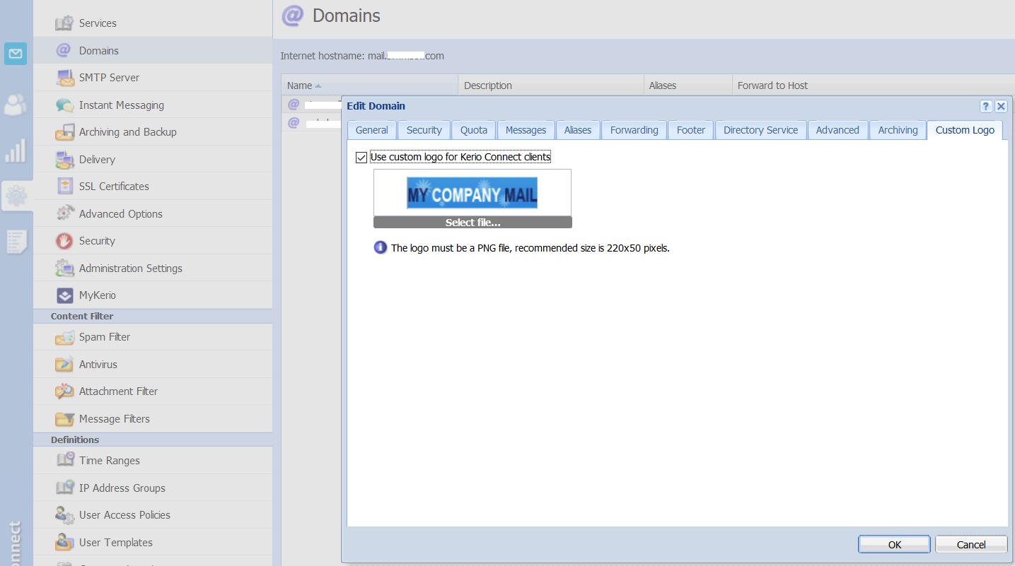 custom_logo_domain.png